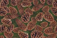 Dark green cotton-jersey with cones